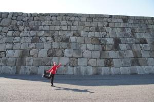 Muraille du Palais Imperial