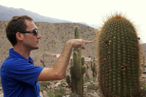 Dans la vie, il y a des cactus...-Tilcara - Argentine