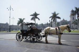 Palais du gouvernement en fond - Lima - Pérou