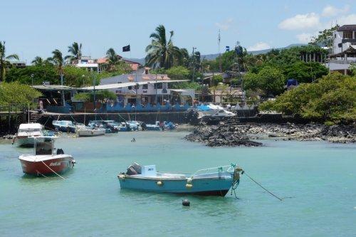 Vue du port - Santa Cruz - Les Galapagos - Equateur