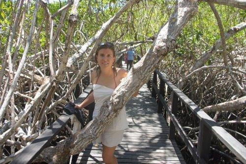 Sur la route de Concha Perla - Isabela - Les Galapagos - Equateur