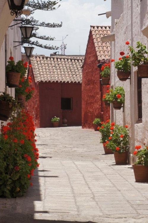 Une des ruelles du couvent - Arequipa - Pérou