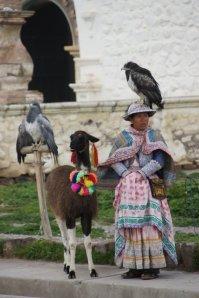 Presque le cirque - Canyon de Colca - Pérou
